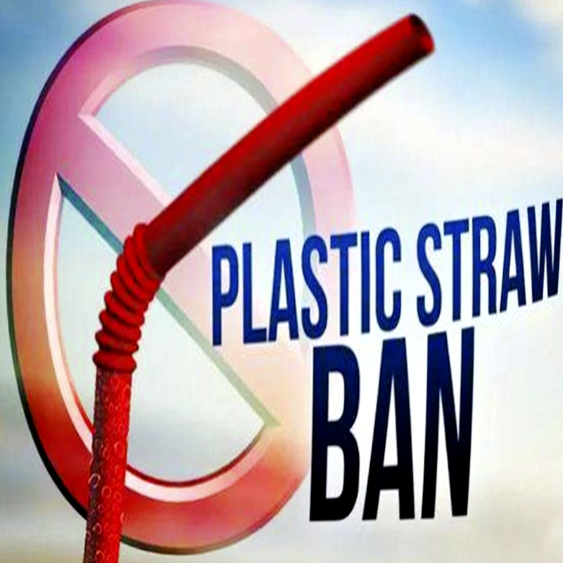 プラスチックストローが禁止された後、何を交換すればよいですか?